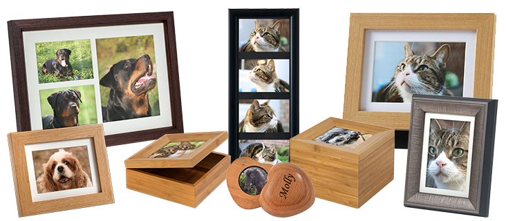 Pet Photo Urns