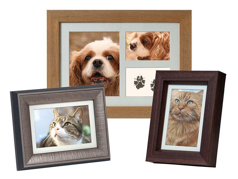 2a505f423c55 Beautiful handmade discrete oak, pewter and walnut frame urns. For pet dog,  horse