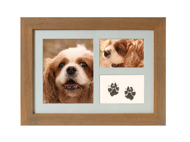 Pawprints taken with our Inkless Wipe kit can be displayed in a photo frame urn