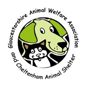 Animal Welfare association. From healthcare and advice to rescue and rehoming, animal welfare organisations are true heroes of the animal world.