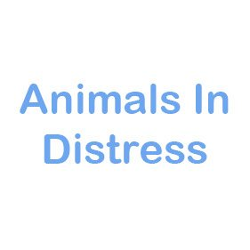 Animals in distress. From healthcare and advice to rescue and rehoming, animal welfare organisations are true heroes of the animal world.