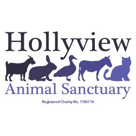 Hollyview Animal Sanctuary. From healthcare and advice to rescue and rehoming, animal welfare organisations are true heroes of the animal world.