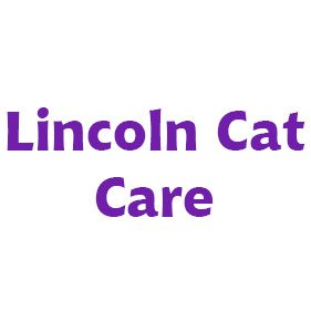 Lincoln Cat Care. From healthcare and advice to rescue and rehoming, animal welfare organisations are true heroes of the animal world.