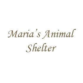 Maria's Animal Shelter. From healthcare and advice to rescue and rehoming, animal welfare organisations are true heroes of the animal world.