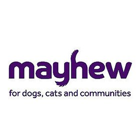 Mayhew. From healthcare and advice to rescue and rehoming, animal welfare organisations are true heroes of the animal world.