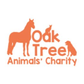 Oak Tree Animal Charity. From healthcare and advice to rescue and rehoming, animal welfare organisations are true heroes of the animal world.