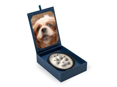 Imprint set, paw print impression set with photo memorial.