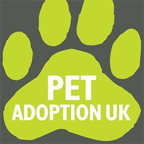 Pet adoption uk. From healthcare and advice to rescue and rehoming, animal welfare organisations are true heroes of the animal world.