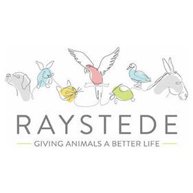 Raystede. From healthcare and advice to rescue and rehoming, animal welfare organisations are true heroes of the animal world.