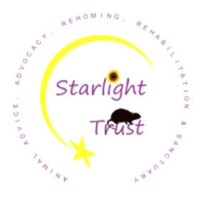 Starlight Trust. From healthcare and advice to rescue and rehoming, animal welfare organisations are true heroes of the animal world.