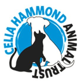Celia Hammond Animal Trust. From healthcare and advice to rescue and rehoming, animal welfare organisations are true heroes of the animal world.