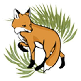 Fox. From healthcare and advice to rescue and rehoming, animal welfare organisations are true heroes of the animal world.