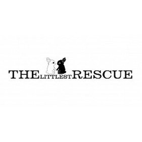 The Littlest Rescue. From healthcare and advice to rescue and rehoming, animal welfare organisations are true heroes of the animal world.
