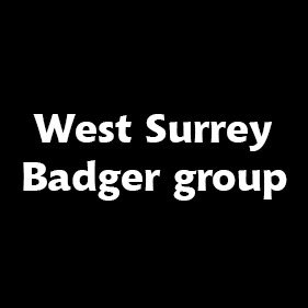 West Surrey Badger Group. From healthcare and advice to rescue and rehoming, animal welfare organisations are true heroes of the animal world.