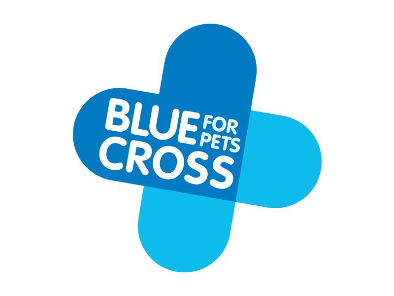 Blue Cross. From healthcare and advice to rescue and rehoming, animal welfare organisations are true heroes of the animal world.
