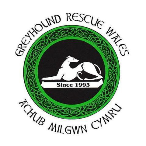 Greyhound Rescure Wales. From healthcare and advice to rescue and rehoming, animal welfare organisations are true heroes of the animal world.