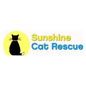 Sunshine Cat Rescue. From healthcare and advice to rescue and rehoming, animal welfare organisations are true heroes of the animal world.