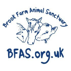 BFAS. From healthcare and advice to rescue and rehoming, animal welfare organisations are true heroes of the animal world.