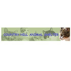 Countryhill Animal Shelter. From healthcare and advice to rescue and rehoming, animal welfare organisations are true heroes of the animal world.