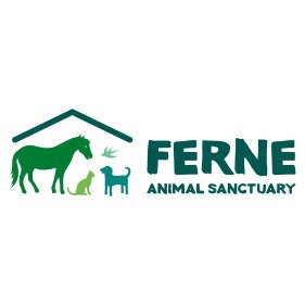 FERNE. From healthcare and advice to rescue and rehoming, animal welfare organisations are true heroes of the animal world.