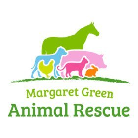 Margaret green Animal Rescue. From healthcare and advice to rescue and rehoming, animal welfare organisations are true heroes of the animal world.