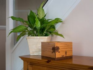 Beautiful bamboo Tribute Box pet ashes casket photo urn and memory box. Pet urns for dog, cat or horse keepsake and memorials. May be personalised.