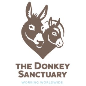 The Donkey Sanctuary. From healthcare and advice to rescue and rehoming, animal welfare organisations are true heroes of the animal world.
