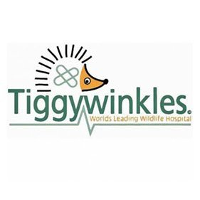 Tiggywinkles. From healthcare and advice to rescue and rehoming, animal welfare organisations are true heroes of the animal world.