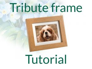 Tribute Frame Photo Urn